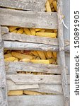 close up of corn cobs drying in ... | Shutterstock . vector #150891905