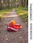 Small photo of Red headscarf abandoned in a forest, vertical composition, concept of going astray