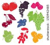 berries vector collection   Shutterstock .eps vector #150942485