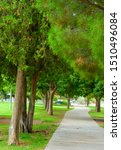 Small photo of Madeline Park in El Paso Texas