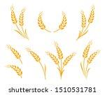 golden hand drawn wheat ears... | Shutterstock .eps vector #1510531781