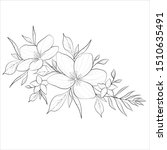 flowers drawing with line art... | Shutterstock .eps vector #1510635491