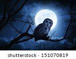 A Quiet Night  A Bright Moon...