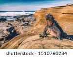 Galapagos Islands Marine Iguan...
