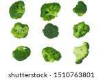 Broccoli Isolated On White...
