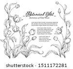 sketch floral botany collection.... | Shutterstock .eps vector #1511172281