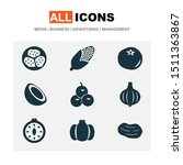 vegetable icons set with bulb ... | Shutterstock . vector #1511363867
