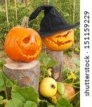 Jack-o-lantern pumpkins in the garden - stock photo