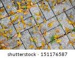 Brick Pavement Blocks.