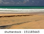 waves on the tropical  exotic ... | Shutterstock . vector #151185665