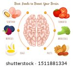 the best food for a healthy...   Shutterstock .eps vector #1511881334