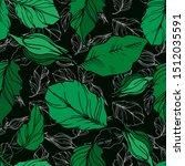 vector rose floral botanical...   Shutterstock .eps vector #1512035591