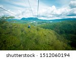 High View Of Pine Forest At Da...