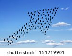 flock of birds forming arrow on ... | Shutterstock . vector #151219901