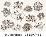 pasta. set of vector sketches | Shutterstock .eps vector #151297451