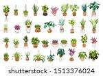 indoor plants flat color... | Shutterstock .eps vector #1513376024