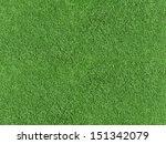 green grass   Shutterstock . vector #151342079