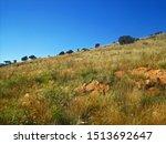Rocks And Grassland On A Slope...