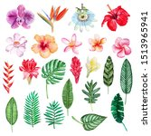 large hand drawn watercolor...   Shutterstock . vector #1513965941