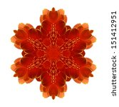 Flower Mandala Isolated On...