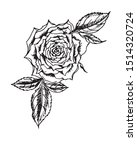rose  top view  black and white ... | Shutterstock .eps vector #1514320724