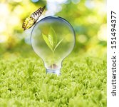 Light Bulb With Plant Growing...