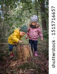 Small photo of Two preschool children exploring forest, in autumn clothing, playing and learning in nature, alternative learning methods