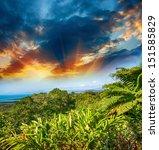 wonderful trees and vegetation... | Shutterstock . vector #151585829