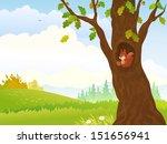 vector illustration of a fall... | Shutterstock .eps vector #151656941