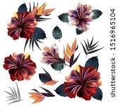 set of vector tropical hibiscus ... | Shutterstock .eps vector #1516965104