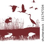 storks and herons on the shore | Shutterstock .eps vector #151747334