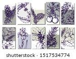 herbal illustration on label...   Shutterstock .eps vector #1517534774