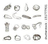 vegetables. set of vector... | Shutterstock .eps vector #151777931