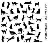 black cat set isolated white... | Shutterstock . vector #1517956544
