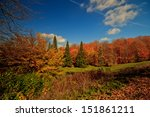 autumn forest landscape of...   Shutterstock . vector #151861211