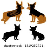 Stock photo  pictures of a dog brown and black sitting and standing dogs and black silhouettes of the 1519252721