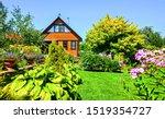 Summer Cottage Garden In Europ...
