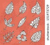 set of 9 hand drawn decorative... | Shutterstock .eps vector #151973729