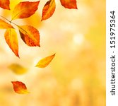 Autumn Leaves Background....