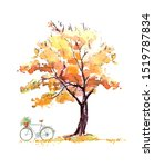 Oak In Autumn And Bicycle...