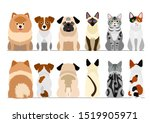 small dogs and cats border... | Shutterstock .eps vector #1519905971