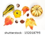 Ornamental Or Decorative Gourd...