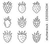 fresh raspberry icons set.... | Shutterstock .eps vector #1520336234