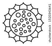 botany sunflower icon. outline... | Shutterstock .eps vector #1520343641