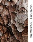 wooden texture. crimean pine... | Shutterstock . vector #152046401