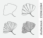 gingko biloba leaf. set of...   Shutterstock .eps vector #1520611064