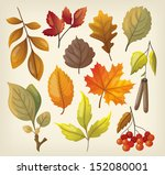set of colorful isolated autumn ... | Shutterstock .eps vector #152080001