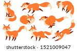Cartoon Red Fox. Funny Foxes...