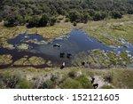 aerial view of elephants ... | Shutterstock . vector #152121605