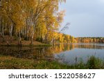 Beautiful Autumn Forest By The...